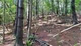 Fraser Fir Trail - Photo 14