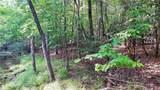 Fraser Fir Trail - Photo 19