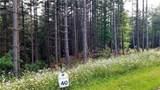 Fraser Fir Trail - Photo 7