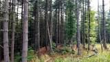 Fraser Fir Trail - Photo 8