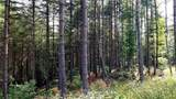 Fraser Fir Trail - Photo 9