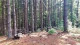 Fraser Fir Trail - Photo 10