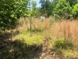 99999 Bear Cliff Circle - Photo 5