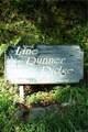 000 Line Runner Ridge Road - Photo 18