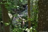 999 Hemlock Trail - Photo 13