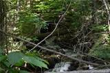 999 Hemlock Trail - Photo 8
