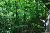 999 Hemlock Trail - Photo 10