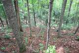 Lot 551 Autumn Ridge Drive - Photo 4