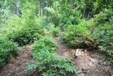 Lot 551 Autumn Ridge Drive - Photo 10