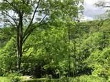 4.59 acres on Wesley Creek Road - Photo 11
