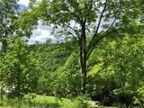 4.59 acres on Wesley Creek Road - Photo 10