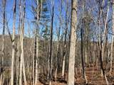 25 Tulip Poplar Trail - Photo 3