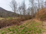 250 Paint Fork Road - Photo 3