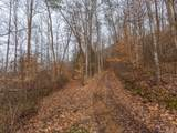 250 Paint Fork Road - Photo 4
