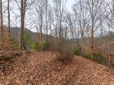 250 Paint Fork Road - Photo 5