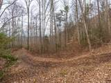 250 Paint Fork Road - Photo 6