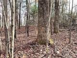 Lt 3 Line Runner Ridge Road - Photo 10