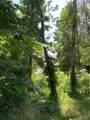 #271 Rustling Woods Drive - Photo 7
