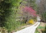 1603 Battle Creek Road - Photo 36