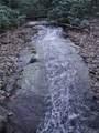 225 Mistletoe Trail - Photo 4