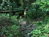 TBD Bear Trail - Photo 26