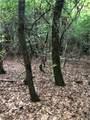 Lot 6A Dogwood Circle - Photo 15