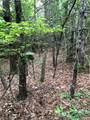 Lot 6A Dogwood Circle - Photo 19