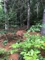 Lot 6A Dogwood Circle - Photo 5