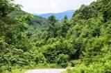 99999 Spring Creek Trail - Photo 12