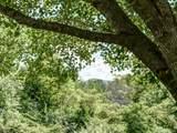 372 Hemlock Springs Trail - Photo 43