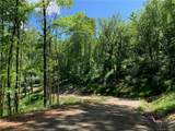 10.19 Acres Lytle Cove Road - Photo 8