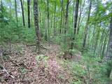 TBD Bluff Mountain Road - Photo 25