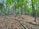 TBD Bluff Mountain Road - Photo 27