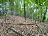 TBD Bluff Mountain Road - Photo 28