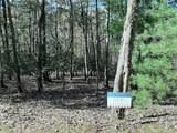 37 Dividing Ridge Trail - Photo 5