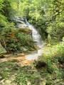 00 Bird Creek Estates Road - Photo 1
