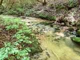 00 Bird Creek Estates Road - Photo 13