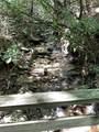 00 Bird Creek Estates Road - Photo 7