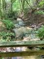 00 Bird Creek Estates Road - Photo 8