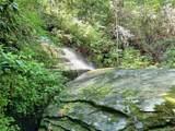 00 Bird Creek Estates Road - Photo 10