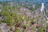 10 AC 2901 (10 acre  Screaming Eagle Road - Photo 3