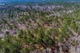 10 AC 2901 (10 acre  Screaming Eagle Road - Photo 7