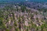 10 AC 2901 (10 acre  Screaming Eagle Road - Photo 9