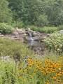 TBD Mountain Brook Trail - Photo 6