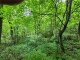 145.34 Acres Paint Fork Road - Photo 12