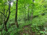 145.34 Acres Paint Fork Road - Photo 13