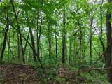 145.34 Acres Paint Fork Road - Photo 18