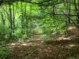 145.34 Acres Paint Fork Road - Photo 21