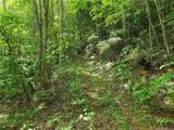 145.34 Acres Paint Fork Road - Photo 24