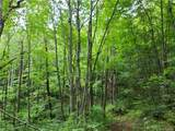 145.34 Acres Paint Fork Road - Photo 28